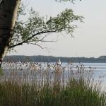 Schwielochsee - Sehenswürdigkeiten an der Spree